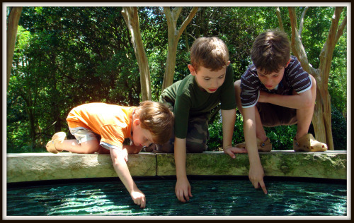 three boys playing in a water fountain
