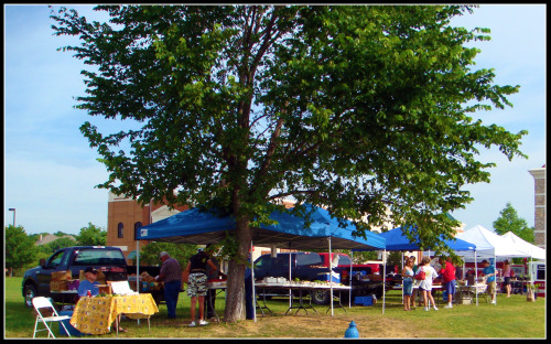 Bartonville Town Center Farmer's Market