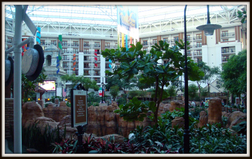 Gaylord Texan inside pic