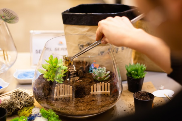 A little kid uses tweezers to put decorations into their succulent terrarium.