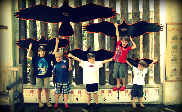 Five boys show wing span