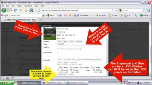 Inserting the image into the WordPress post