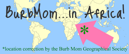 Burb Mom in Africa with geographic correction