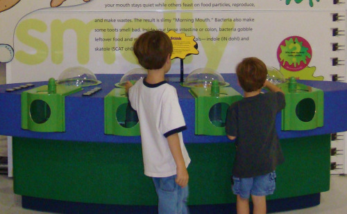 Sniff Station at Grossology at Dallas area children's museum