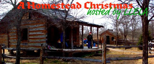 A Homestead Christmas at Lewisville Lake Environmental Learning Area