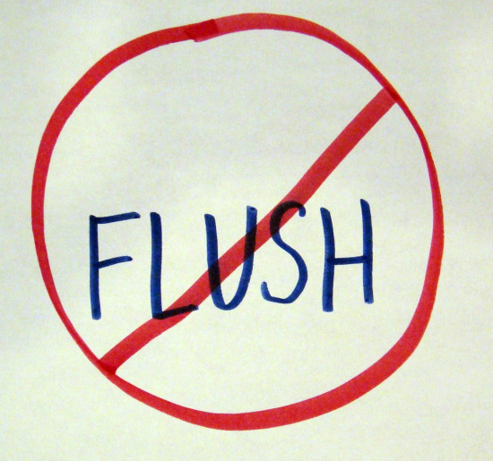 toilet does not flush