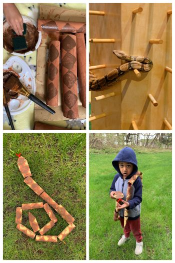 Collage of snake craft using empty toilet paper rolls
