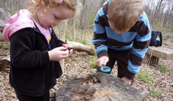 boy and girl looking at tree stump 600x350