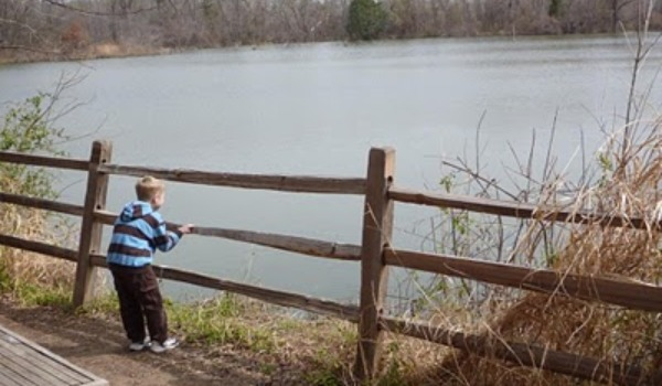 boy looking out over lake 600x350
