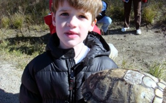 boy with turtle shell 550x340