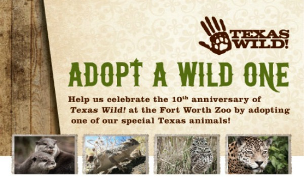 Ft Worth Zoo Adopt a Wild One