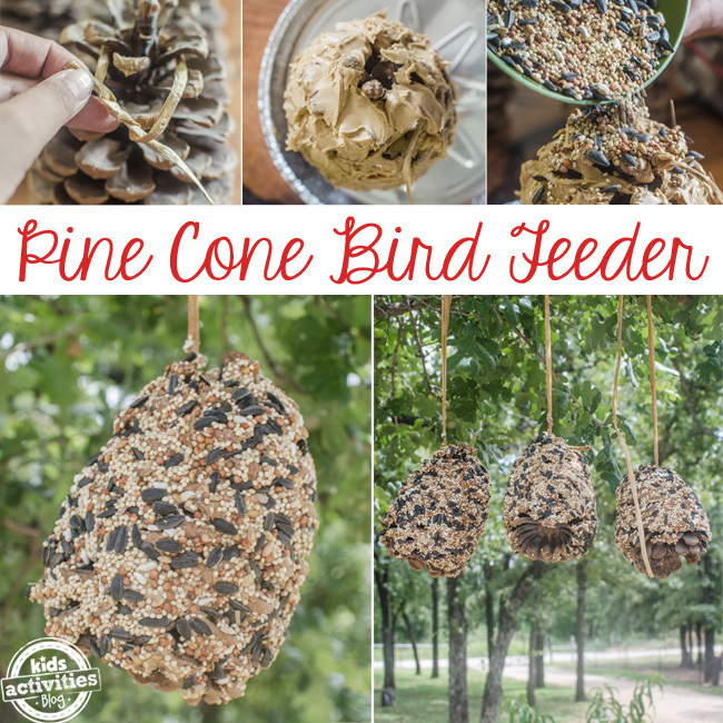 pine cone bird feeder SQUARE