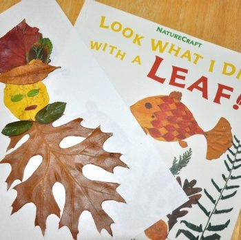 leaf person and book