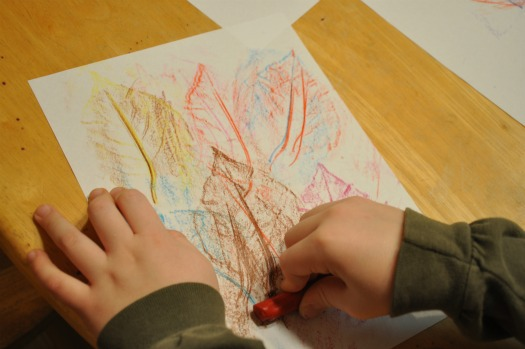 multiple leaf rubbings