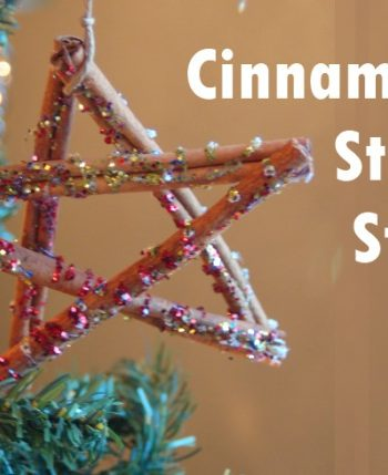 Cinnamon Stick Star Ornament