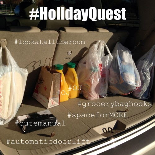Groceries in the back of a Quest Minivan