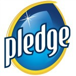 Pledge Logo for June Cleaver Nirvana