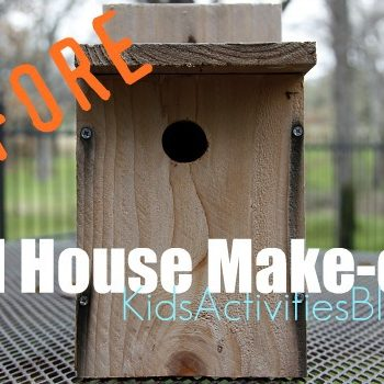 bird house make over before