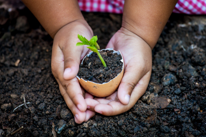 Plant a seed with your kids on Earth Day - Kids Activities Blog