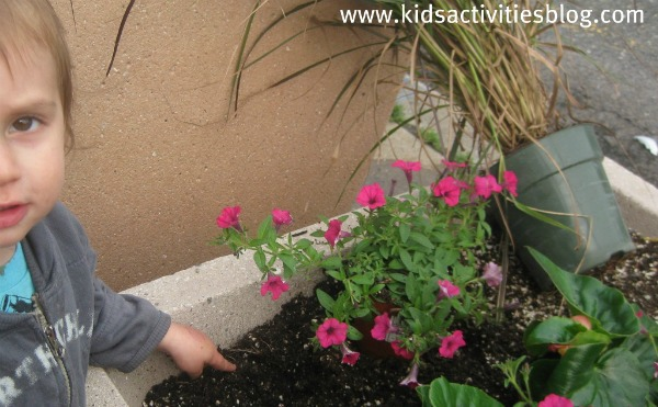 child digging in flower bed