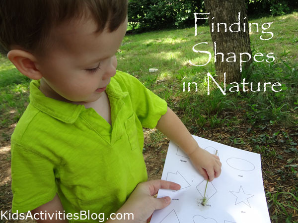 Finding Shapes in Nature