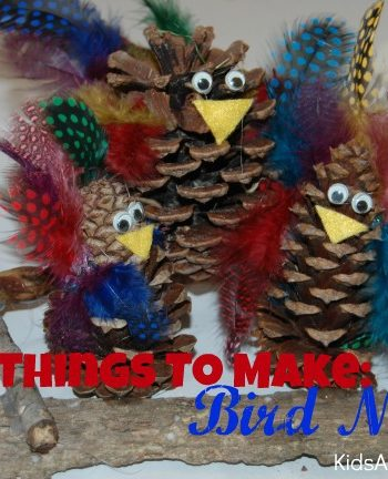 craft things to make bird nests
