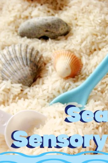Seaside Ocean Homemade Sensory Bin for Kids - Kids Activities Blog