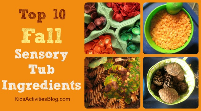 Top 10 Ingredients for a Fall Sensory Tub