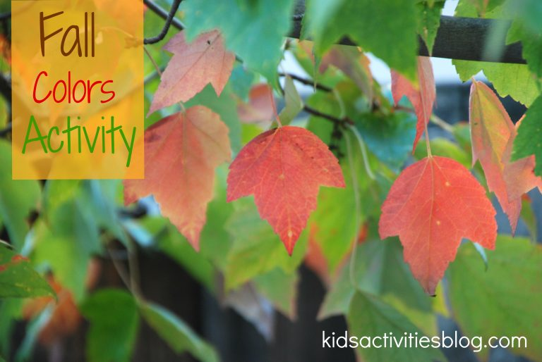 Printable Color Activities and Sorting Activity {with Fall Colors}