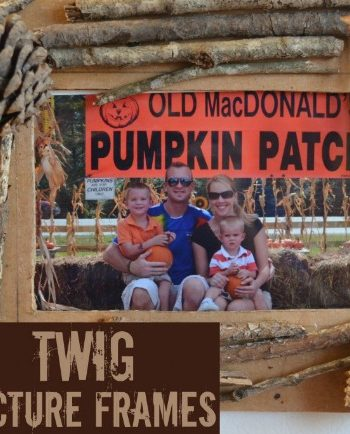fall twig picture frame