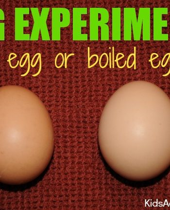 {Easter} Egg Experiment for Kids: Raw or Boiled