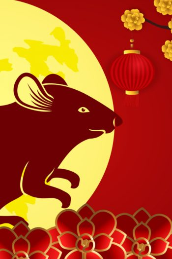 chinese new year rat feature