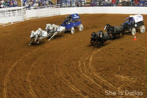 Fort Worth Stock Show and Rodeo Chuck Wagon Races