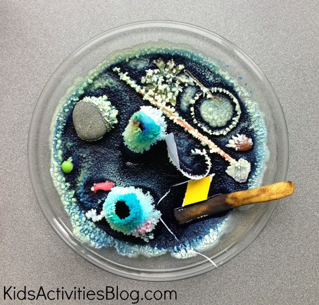 Easy science experiments for kids with hands on science