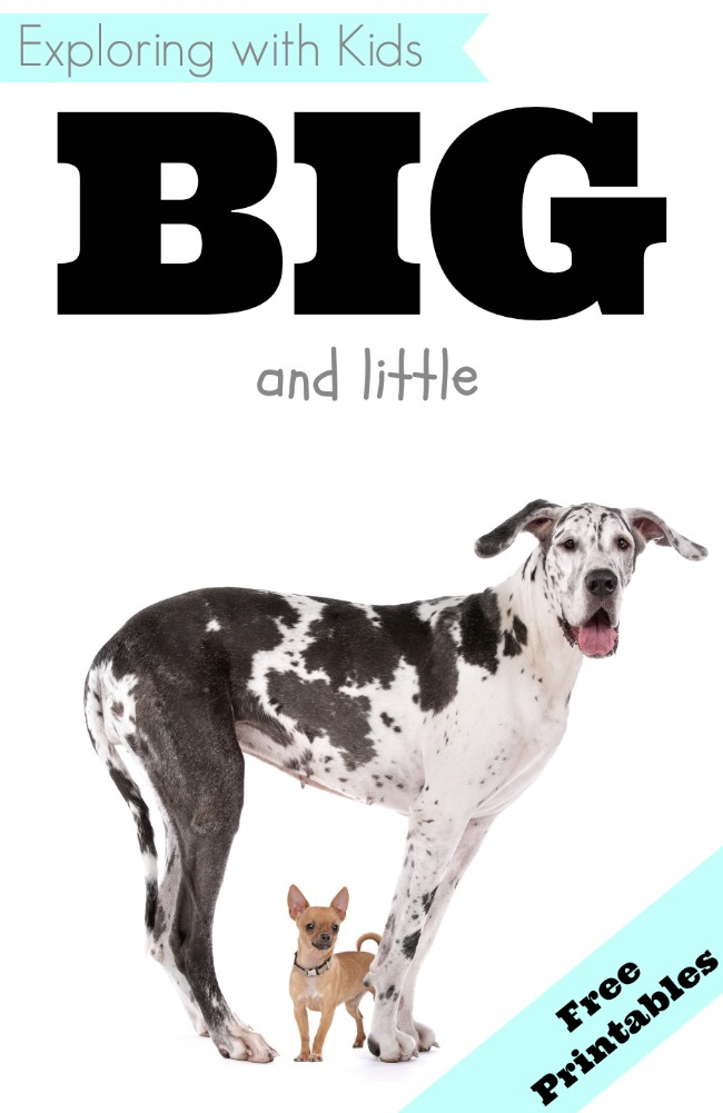 big and little free printables