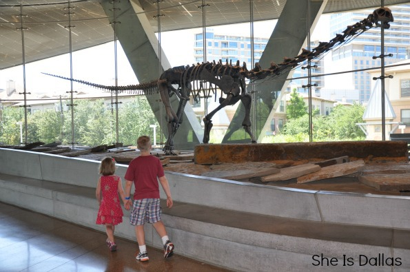 Summer Time at the Perot Museum of Nature and Science {Dallas}