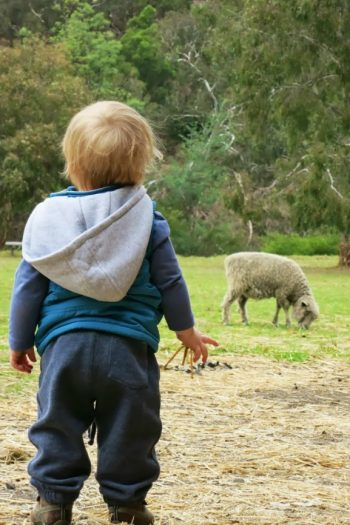 10 Things to Do with Kids in Melbourne Australia from Kids Activities Blog