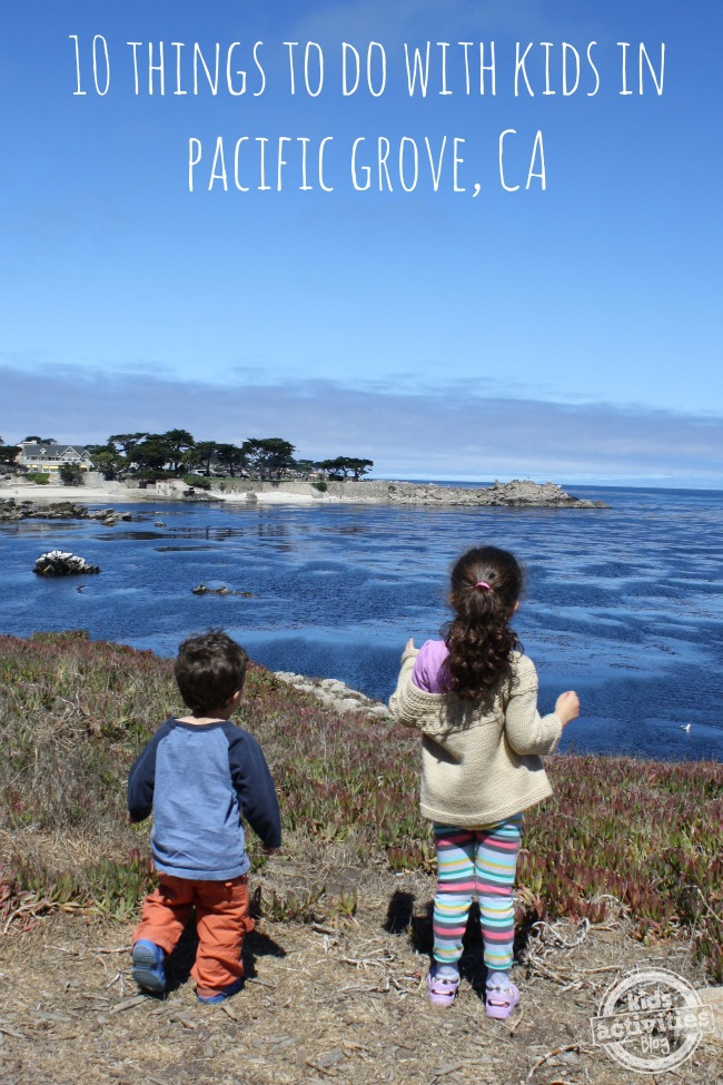 10 Things to Do with Kids in Pacific Grove California