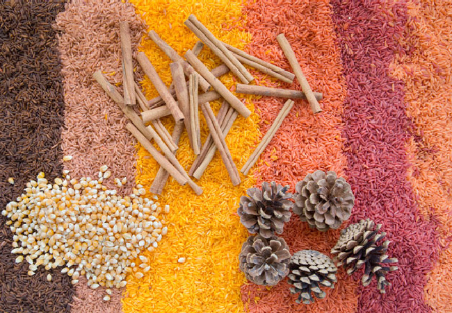 Fall sensory bin with mulit-colored rice, cinnamon sticks, kernels, and pine cones.