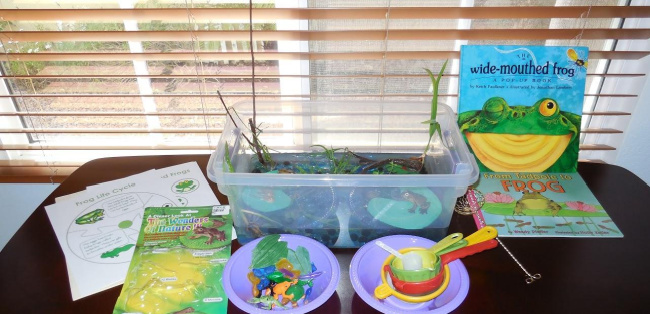 Frog sensory bin and pond unit set up on a table with a plastic bin, pond worksheets, and tools.