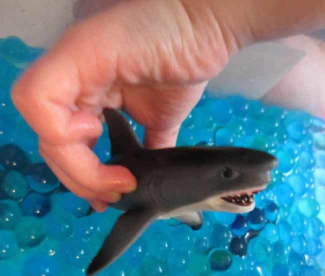 Kid play with a plastic toy shark in a bin of blue water beads.