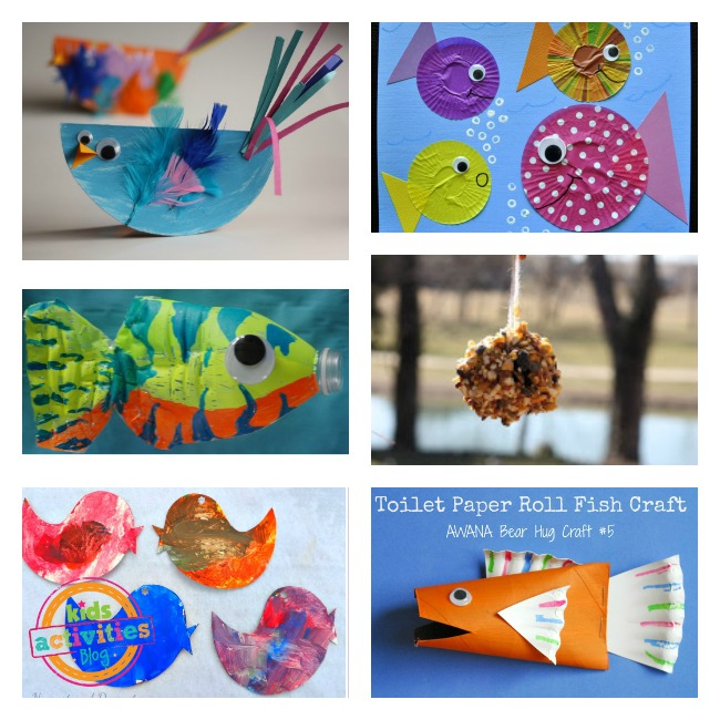 day 5 creation craft birds fish