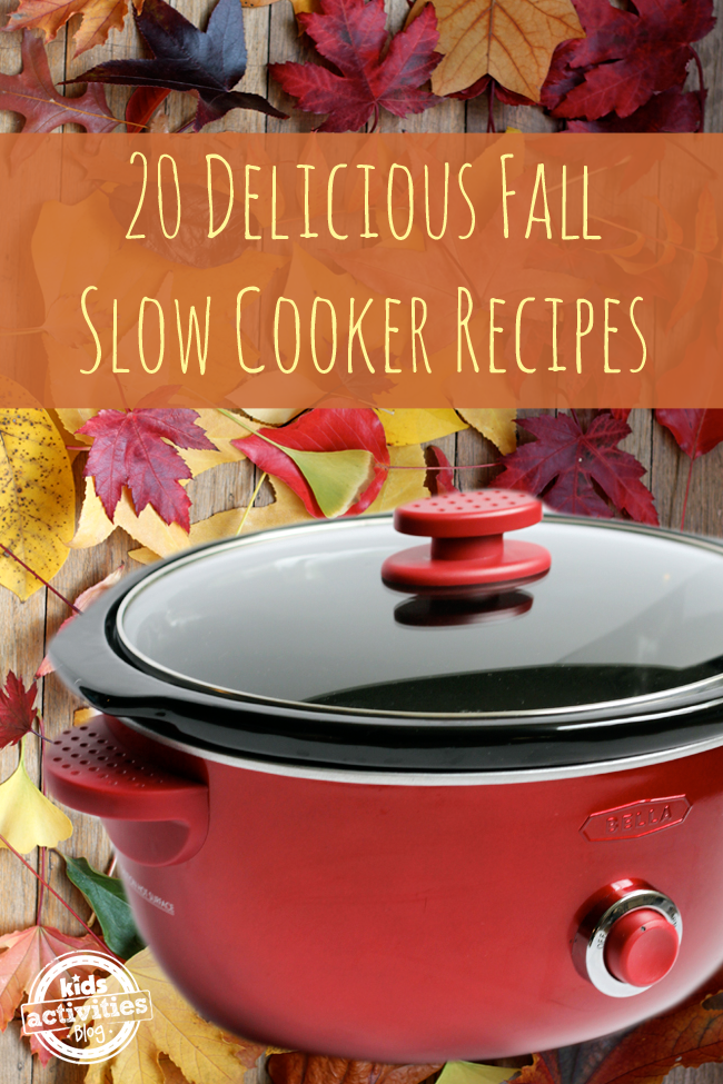 """A crockpot takes up the space under the words """"20 Delicious Fall Slow Cooker Recipes"""""""