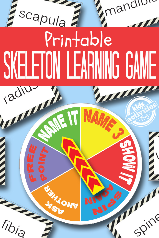 Skeleton Printable Game- with a spinner with name it, name 3, show it, spin again, ask another, and free point and cards with names of the bones.