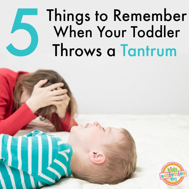 when your toddler throws a tantrum
