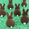 Chocolate Bunny Silhouette Cookies