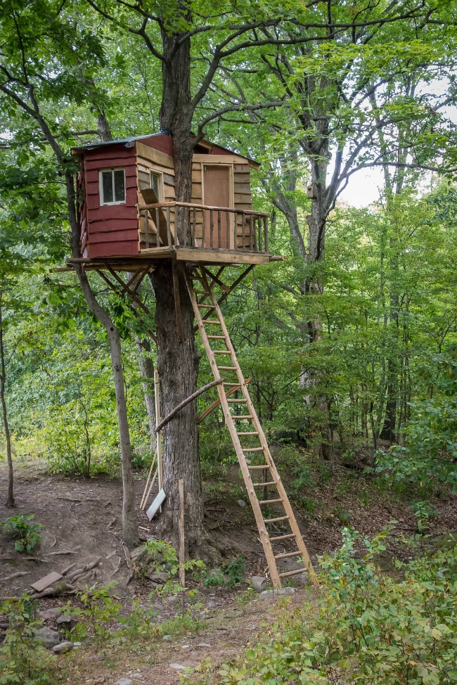 Two Door Treehouse - Kids Activities Blog