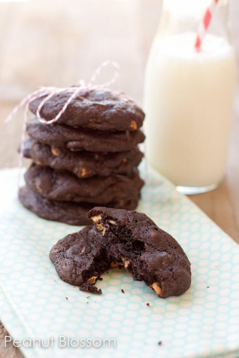 Chocolate Peanut Butter Chip Cookies | Peanut Blossom