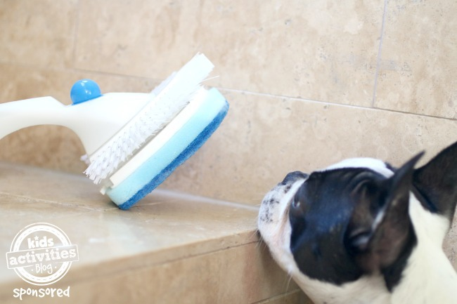 Shower Shimmy with dog
