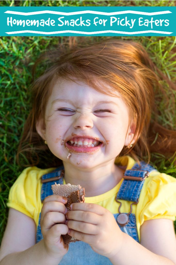 Homemade Snacks for Picky Eaters from Kids Activities Blog
